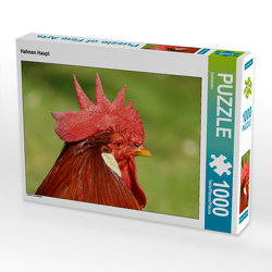 CALVENDO Puzzle Hahnen Haupt 1000 Teile Lege-Größe 64 x 48 cm Foto-Puzzle Bild von Kattobello