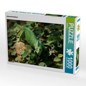CALVENDO Puzzle Jemenchamäleon 1000 Teile Lege-Größe 64 x 48 cm Foto-Puzzle Bild von Kattobello
