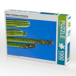 CALVENDO Puzzle Kakteen – Stacheliges aus Südamerika 1000 Teile Lege-Größe 48 x 64 cm Foto-Puzzle Bild von Dieter Meyer