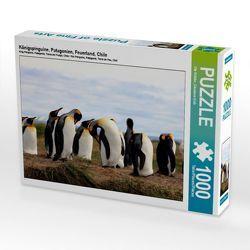 CALVENDO Puzzle Königspinguine, Patagonien, Feuerland, Chile 1000 Teile Lege-Größe 64 x 48 cm Foto-Puzzle Bild von Ute Köhler von Göb,  Clemens, Köhler,  Ute
