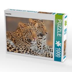 CALVENDO Puzzle Leoparden 1000 Teile Lege-Größe 64 x 48 cm Foto-Puzzle Bild von Rose Hurley
