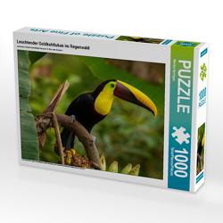 CALVENDO Puzzle Leuchtender Goldkehltukan im Regenwald 1000 Teile Lege-Größe 64 x 48 cm Foto-Puzzle Bild von Marion Springer