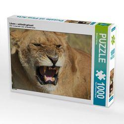 CALVENDO Puzzle Löwen – schlecht gelaunt 1000 Teile Lege-Größe 64 x 48 cm Foto-Puzzle Bild von Michael Herzog