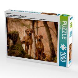 CALVENDO Puzzle Löwentanz – Rhodesian Ridgeback 1000 Teile Lege-Größe 64 x 48 cm Foto-Puzzle Bild von Sabrina Mischnik von Mischnik,  Sabrina