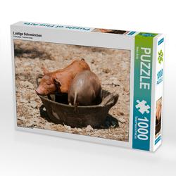 CALVENDO Puzzle Lustige Schweinchen 1000 Teile Lege-Größe 64 x 48 cm Foto-Puzzle Bild von Meike Bölts
