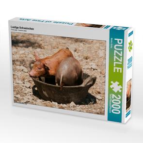 CALVENDO Puzzle Lustige Schweinchen 2000 Teile Lege-Größe 90 x 67 cm Foto-Puzzle Bild von Meike Bölts