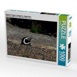 CALVENDO Puzzle Magellan Pinguin, Patagonien, Argentinien 1000 Teile Lege-Größe 64 x 48 cm Foto-Puzzle Bild von Ute Köhler von Göb,  Clemens, Köhler,  Ute
