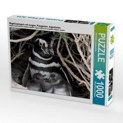 CALVENDO Puzzle Magellanpinguin mit Jungen, Patagonien, Argentinien 1000 Teile Lege-Größe 64 x 48 cm Foto-Puzzle Bild von Ute Köhler von Göb,  Clemens, Köhler,  Ute