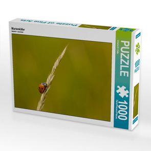 CALVENDO Puzzle Marienkäfer 1000 Teile Lege-Größe 64 x 48 cm Foto-Puzzle Bild von Ursula Di Chito von Di Chito,  Ursula