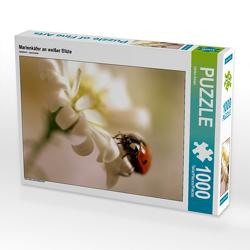 CALVENDO Puzzle Marienkäfer an weißer Blüte 1000 Teile Lege-Größe 64 x 48 cm Foto-Puzzle Bild von Ulrike Adam