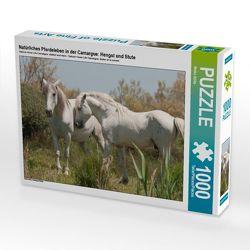 CALVENDO Puzzle Natürliches Pferdeleben in der Camargue: Hengst und Stute 1000 Teile Lege-Größe 64 x 48 cm Foto-Puzzle Bild von Meike Bölts
