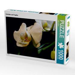 CALVENDO Puzzle Orchidee und Tropfen 1000 Teile Lege-Größe 64 x 48 cm Foto-Puzzle Bild von Heike Hultsch von Hultsch,  Heike