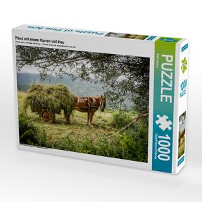 CALVENDO Puzzle Pferd mit einem Karren voll Heu 1000 Teile Lege-Größe 64 x 48 cm Foto-Puzzle Bild von Rolf Hecker