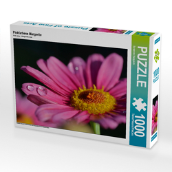 CALVENDO Puzzle Pinkfarbene Margerite 1000 Teile Lege-Größe 64 x 48 cm Foto-Puzzle Bild von Susanne Herppich