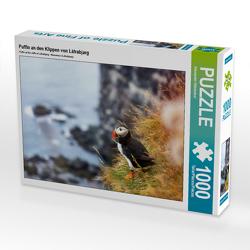 CALVENDO Puzzle Puffin an den Klippen von Látrabjarg 1000 Teile Lege-Größe 64 x 48 cm Foto-Puzzle Bild von Alexander Höntschel