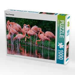 CALVENDO Puzzle Rosa Flamingo 1000 Teile Lege-Größe 64 x 48 cm Foto-Puzzle Bild von Michael Jaster