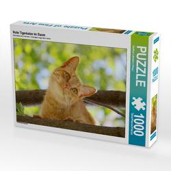 CALVENDO Puzzle Rote Tigerkatze im Baum 1000 Teile Lege-Größe 64 x 48 cm Foto-Puzzle Bild von Steffani Lehmann (Hrsg.)