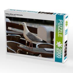 CALVENDO Puzzle Schlaue Möwe auf Futtersuche 2000 Teile Lege-Größe 90 x 67 cm Foto-Puzzle Bild von Tanja Riedel