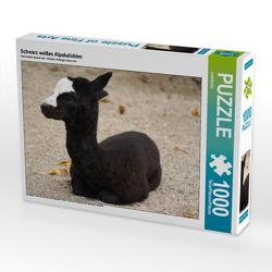 CALVENDO Puzzle Schwarz weißes Alpakafohlen 1000 Teile Lege-Größe 64 x 48 cm Foto-Puzzle Bild von kattobello