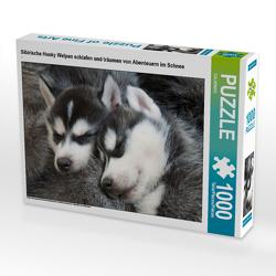 CALVENDO Puzzle Sibirische Husky Welpen schlafen und träumen von Abenteuern im Schnee 1000 Teile Lege-Größe 64 x 48 cm Foto-Puzzle Bild von CALVENDO