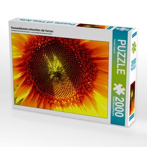 CALVENDO Puzzle Sonnenblumen erleuchten die Herzen 2000 Teile Lege-Größe 90 x 67 cm Foto-Puzzle Bild von Karsten Suppelt