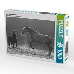 CALVENDO Puzzle Spiel im Morgenlicht 1000 Teile Lege-Größe 64 x 48 cm Foto-Puzzle Bild von Meike Bölts