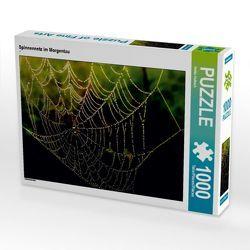 CALVENDO Puzzle Spinnennetz im Morgentau 1000 Teile Lege-Größe 64 x 48 cm Foto-Puzzle Bild von Heike Hultsch von Hultsch,  Heike