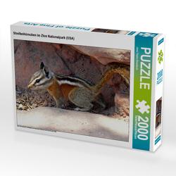 CALVENDO Puzzle Streifenhörnchen im Zion Nationalpark (USA) 2000 Teile Lege-Größe 90 x 67 cm Foto-Puzzle Bild von Jana Thiem-Eberitsch
