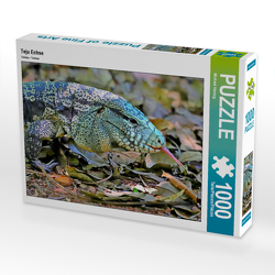 CALVENDO Puzzle Teju Echse 1000 Teile Lege-Größe 64 x 48 cm Foto-Puzzle Bild von Michael Herzog