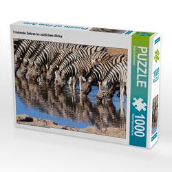 CALVENDO Puzzle Trinkende Zebras im südlichen Afrika 1000 Teile Lege-Größe 64 x 48 cm Foto-Puzzle Bild von Birgit Scharnhorst