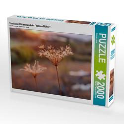 """CALVENDO Puzzle Trockener Blütenstand der """"Wilden Möhre"""" 2000 Teile Lege-Größe 90 x 67 cm Foto-Puzzle Bild von Sabine Löwer"""