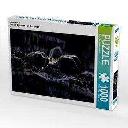 CALVENDO Puzzle Unsere Spinnen – im Gespräch 1000 Teile Lege-Größe 64 x 48 cm Foto-Puzzle Bild von Carl-Peter Herbolzheimer von Herbolzheimer,  Carl-Peter