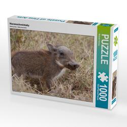 CALVENDO Puzzle Warzenschweinbaby 1000 Teile Lege-Größe 64 x 48 cm Foto-Puzzle Bild von Michael Herzog