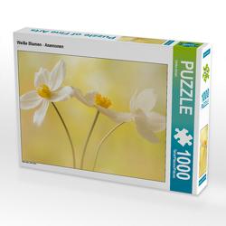 CALVENDO Puzzle Weiße Blumen – Anemonen 1000 Teile Lege-Größe 64 x 48 cm Foto-Puzzle Bild von Ulrike Adam