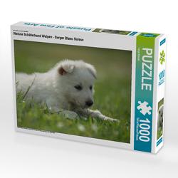 CALVENDO Puzzle Weisse Schäferhund Welpen – Berger Blanc Suisse 1000 Teile Lege-Größe 64 x 48 cm Foto-Puzzle Bild von Tanja Riedel