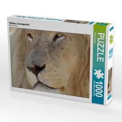 CALVENDO Puzzle Weißes Löwengesicht 1000 Teile Lege-Größe 64 x 48 cm Foto-Puzzle Bild von Barbara Fraatz
