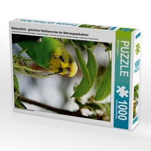 CALVENDO Puzzle Wellensittich – glückliche Wellihenne bei der Nahrungsaufnahme! 1000 Teile Lege-Größe 48 x 64 cm Foto-Puzzle Bild von Björn Bergmann