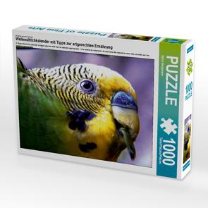 CALVENDO Puzzle Wellensittichkalender mit Tipps zur artgerechten Ernährung 1000 Teile Lege-Größe 64 x 48 cm Foto-Puzzle Bild von Björn Bergmann
