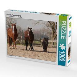 CALVENDO Puzzle Zauber der Verständigung 1000 Teile Lege-Größe 64 x 48 cm Foto-Puzzle Bild von Meike Bölts