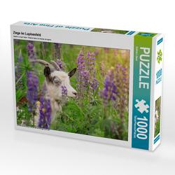 CALVENDO Puzzle Ziege im Lupinenfeld 1000 Teile Lege-Größe 64 x 48 cm Foto-Puzzle Bild von Sabine Löwer