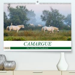 Camargue – Der wilde Süden Frankreichs (Premium, hochwertiger DIN A2 Wandkalender 2020, Kunstdruck in Hochglanz) von Schikore,  Martina