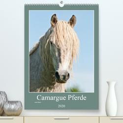 Camargue Pferde – weiße Mähnen (Premium, hochwertiger DIN A2 Wandkalender 2020, Kunstdruck in Hochglanz) von Bölts,  Meike