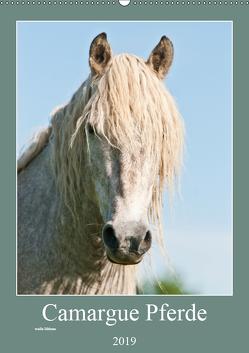 Camargue Pferde – weiße Mähnen (Wandkalender 2019 DIN A2 hoch) von Bölts,  Meike