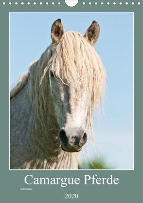 Camargue Pferde – weiße Mähnen (Wandkalender 2020 DIN A4 hoch) von Bölts,  Meike