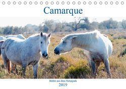 Camarque – Bilder aus dem Naturpark (Tischkalender 2019 DIN A5 quer) von Eble,  Tobias