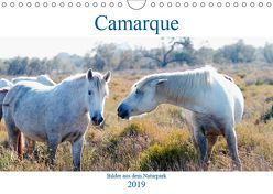 Camarque – Bilder aus dem Naturpark (Wandkalender 2019 DIN A4 quer) von Eble,  Tobias