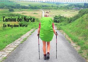 Camino del Norte – Ein Weg ohne Worte (Wandkalender 2019 DIN A3 quer) von Giesecke,  Maren
