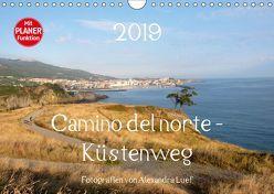 Camino del norte – Küstenweg (Wandkalender 2019 DIN A4 quer) von Luef,  Alexandra