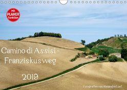Camino di Assisi – FranziskuswegAT-Version (Wandkalender 2019 DIN A4 quer) von Luef,  Alexandra