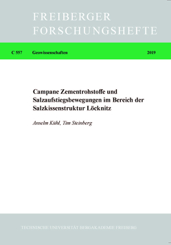 Campane Zementrohstoffe und Salzaufstiegsbewegungen im Bereich der Salzkissenstruktur Löcknitz von Kühl,  Anselm, Steinberg,  Tim